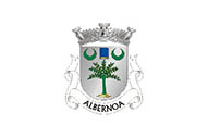 Bandera de Albernoa