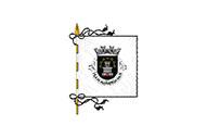 Bandeira do Alfândega da Fé (freguesia)