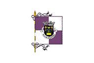 Flag of Aljustrel (freguesia)
