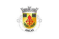 Bandera de Ancas