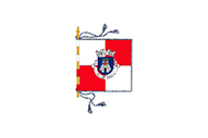 Bandera de Angeja