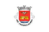 Bandiera di Ariz (Moimenta da Beira)
