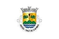 Bandiera di Arões (Vale de Cambra)