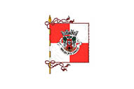 Bandera de Arruda dos Vinhos (freguesia)