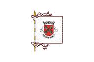 Bandera de Aveleda (Braga)