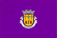 Bandera de Palmela