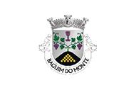 Bandera de Baguim do Monte