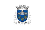 Bandera de Barbacena (Elvas)