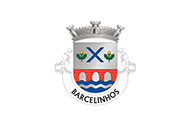 Flag of Barcelinhos