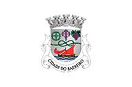 Bandera de Barreiro (freguesia)