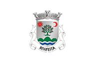 Bandera de Benfeita