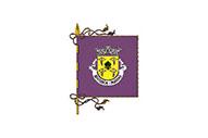 Bandiera di Besteiros (Paredes)