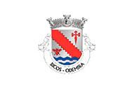 Bandera de Bicos