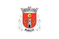 Bandera de Burgo (Arouca)