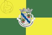 Bandera de Moimenta da Beira