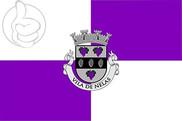 Bandera de Nelas