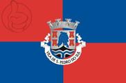 Flag of São Pedro do Sul, Portugal