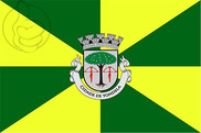 Bandiera di Tondela