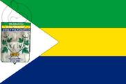 Bandera de Umarizal