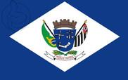 Bandera de Álvares Machado