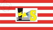 Bandera de Solânea
