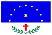 Bandera de Salgueiro