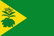 Bandiera di Valderrubio