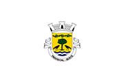 Bandera de Troviscal