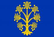 Flag of Appleby-in-Westmorland, Westmorland