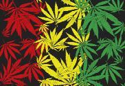 Bandera de Cannabis rasta