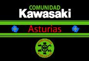 Bandera de Kawasaki Asturias 2