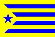 Flag of Estelada Palamós Club de Futbol
