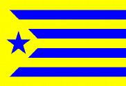Bandera de Estelada Palamós Club de Futbol