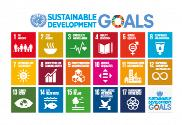 Flag of Sustainable Development Goals UN