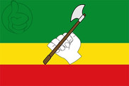 Bandera de Saravena
