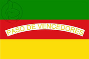 Flag of Concepción
