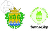 Flag of Camping Pinar del Rey