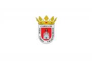Flag of Soria