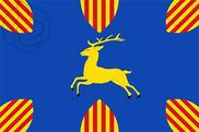 Bandera de Cerveruela