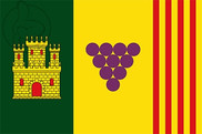 Bandera de Torrelavit