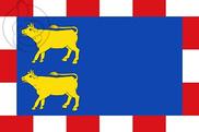 Bandera de Novillas