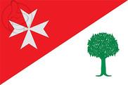 Flag of Binaced