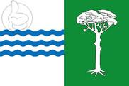 Bandeira do Pedro Rodríguez