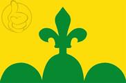 Bandera de Bellpuig