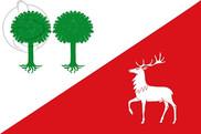 Bandera de Robleda Cervantes