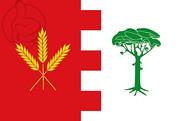 Bandera de Ataquines