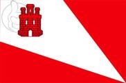 Bandera de Baraona