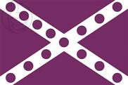 Bandera de La Ercina