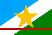 Bandera de Roraima