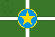Flag of Jackson